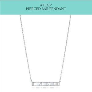 Tiffany and Co. Atlas Pendant Necklace!